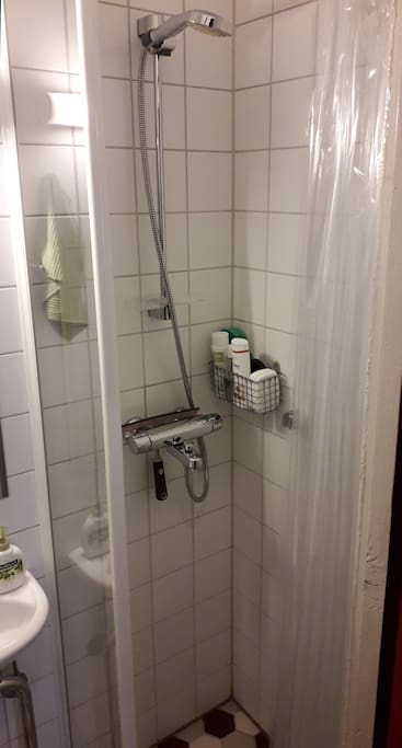 Shower / Toilet
