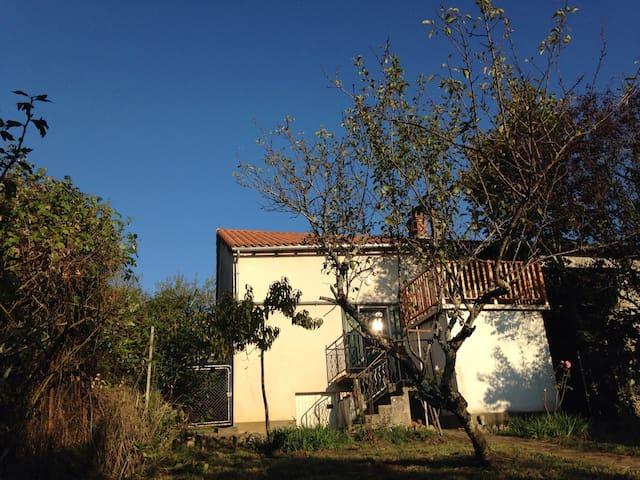 La Petite Maison de Monge - Eyzerac - Huis