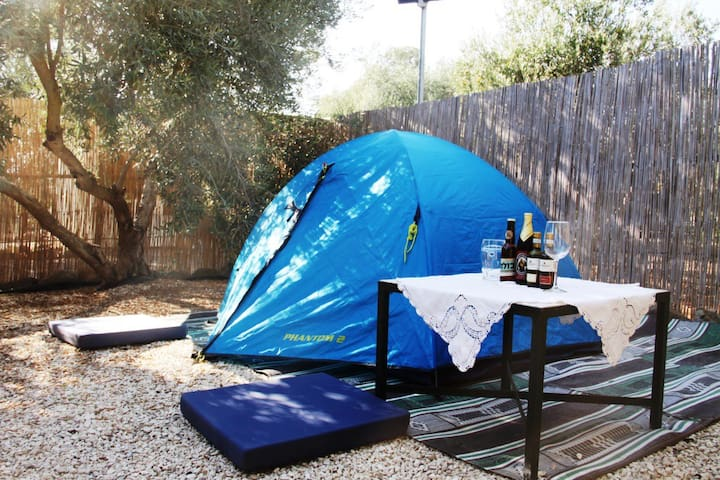 A tent between the olive trees - Kfar Kisch - Tenda de campanya