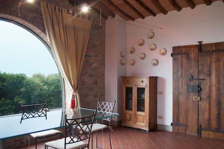 Old, beautiful Tuscan country house - Terricciola