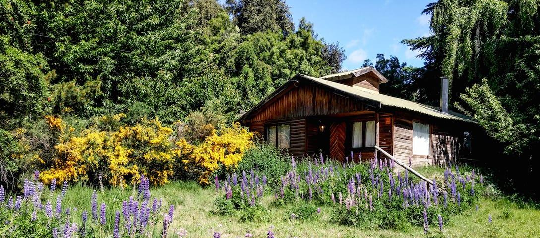 Rustic Log house near Lago Gutierrez. - San Carlos de Bariloche - House