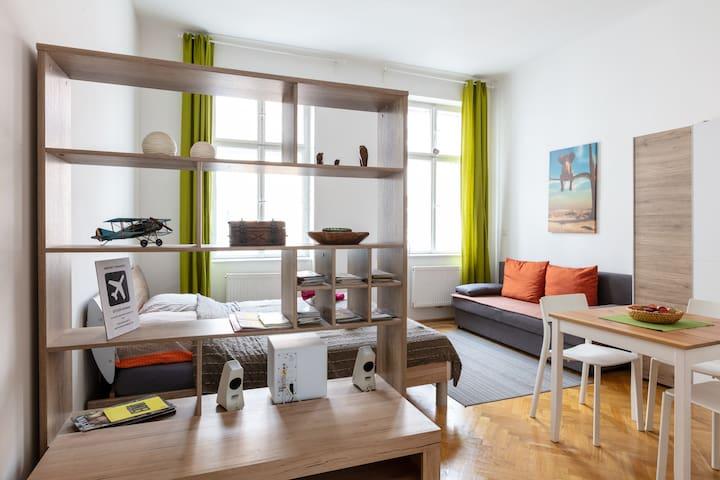 A nice apartment near the center