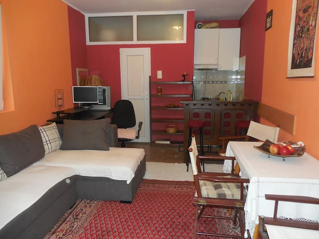 Comfy apartment, walking distance to Cathedral - Novi Sad - Apartament