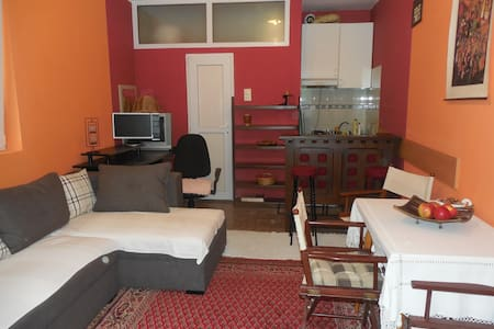 Comfy apartment, walking distance to Cathedral - Novi Sad - Apartmen