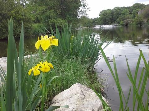 Gîte de l'île aux iris en bord de rivière la Sèvre