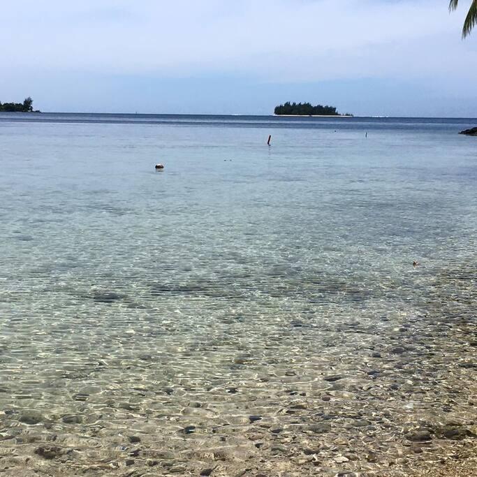 Possibilité d'accéder à la mer à moins de 100m de la maison, pour un déjeuner les pieds dans l'eau pourquoi pas ^^