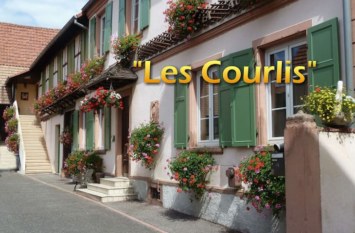 Les Courlis - Hœrdt - Apartment