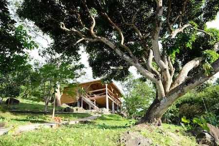 The Tree House, Crayfish Bay Organic Estate