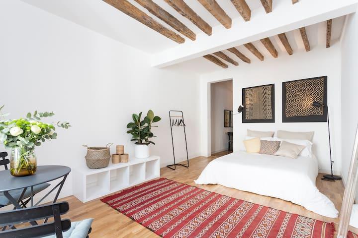 Marais - Spacious & Central 2 Bedroom