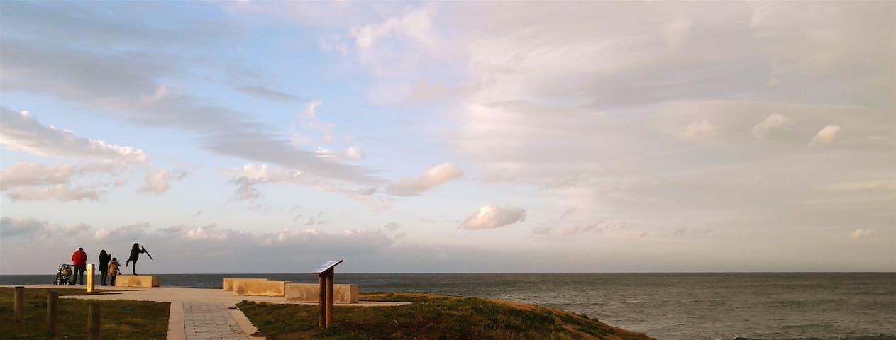 Mar, tranquilidad y buena gastronomía - Rinlo - Apartament