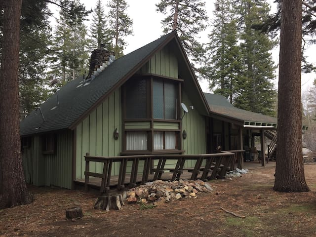 Huge Cabin in the Giant Sequoias!