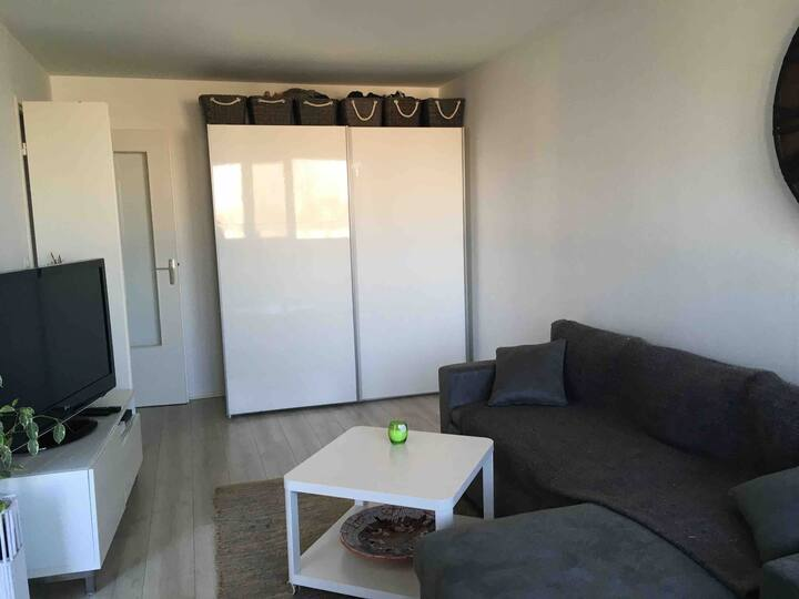 Appartement 2 chambres Guyancourt