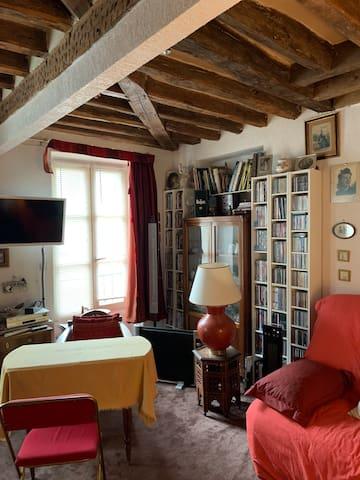 Studio de charme, 27 m2, à Charenton le Pont. À 5' du métro, 2 lignes de bus en bas de la rue, tout confort, vraie salle de bain  cuisine équipée.