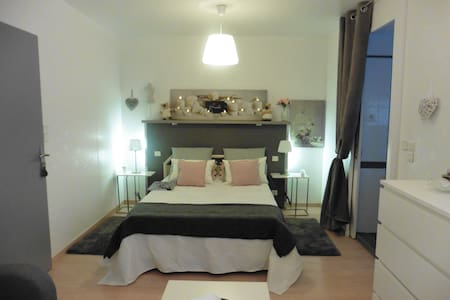 Bed and Breakfast en-suite dans pavillon de charme - Montrabé - Hus