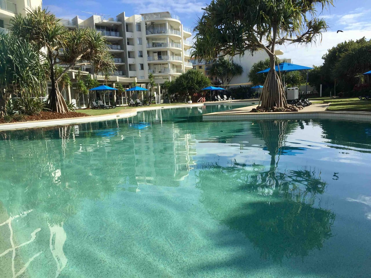 The amazing heated resort pool next to the bistro and beach