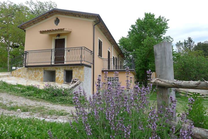 """Camera """"Lontra"""" alla Quercia di Licari - Laino Borgo - Bed & Breakfast"""