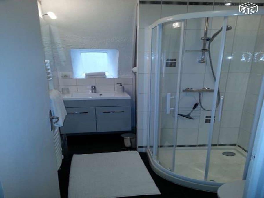 Salle d'eau lumineuse et douche spatieuse