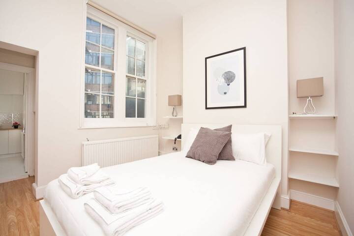 Superb flat in Mayfair 1 minute from Carnaby St F2