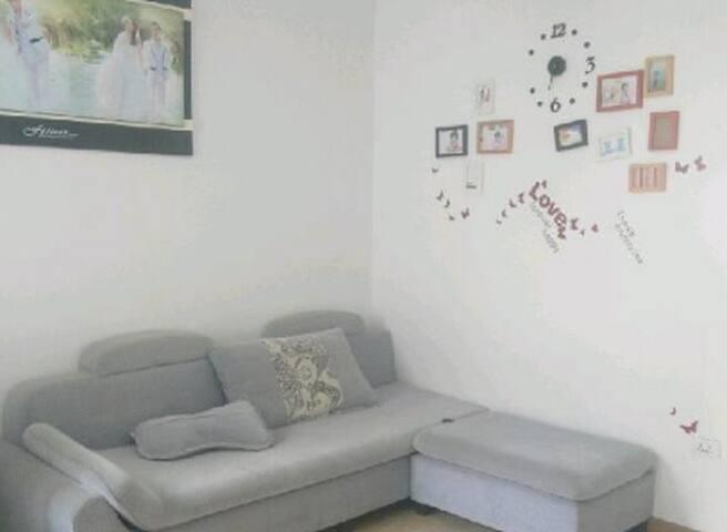 珠山美景房 - Jingdezhen - Appartement