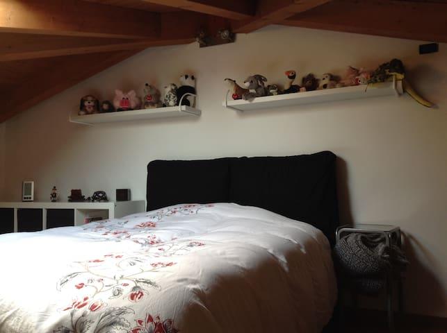ferret's home