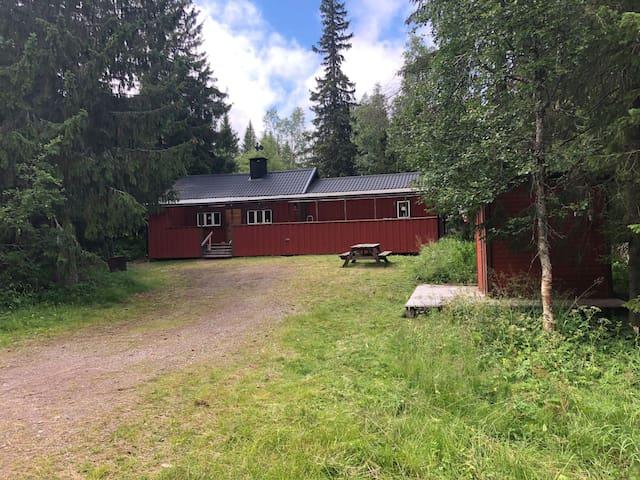 Holiday cabin near Njupeskär Fulufjället Idre Wifi