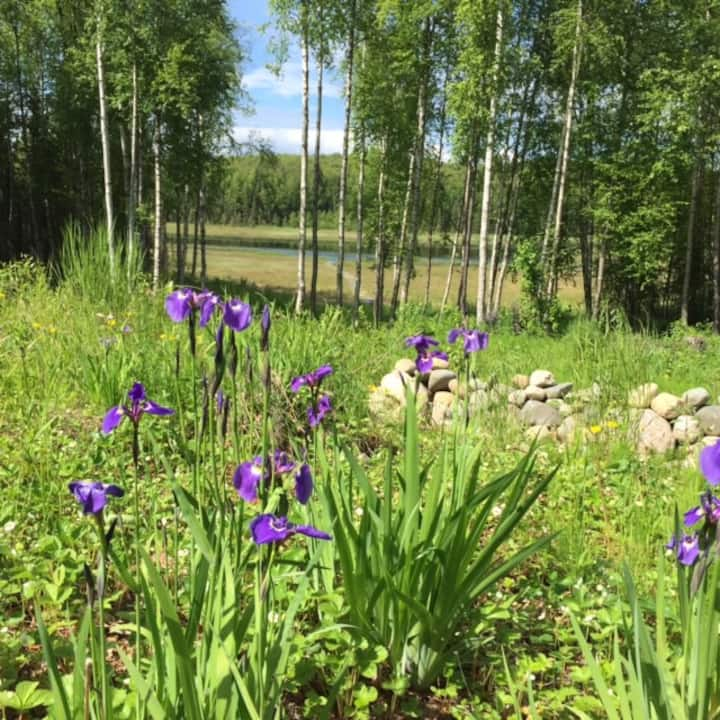 Alaska Wilderness Bed & Breakfdast