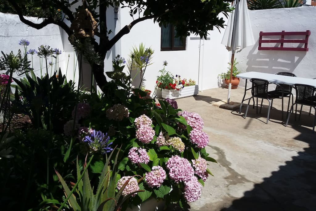Jardim - Zona de refeições