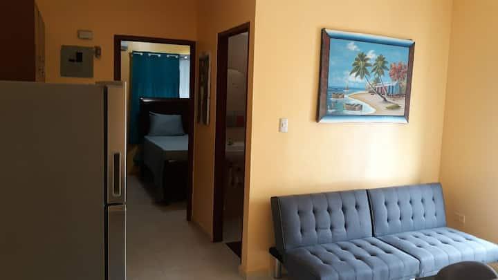 Entire Apartment VILLA MELLA. Residencial Miami ||