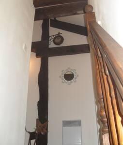 Chambre/loft confort 35m2 - Pau