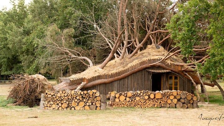 La cabane  au creux du pin  jusqu'à  5 voyageurs !