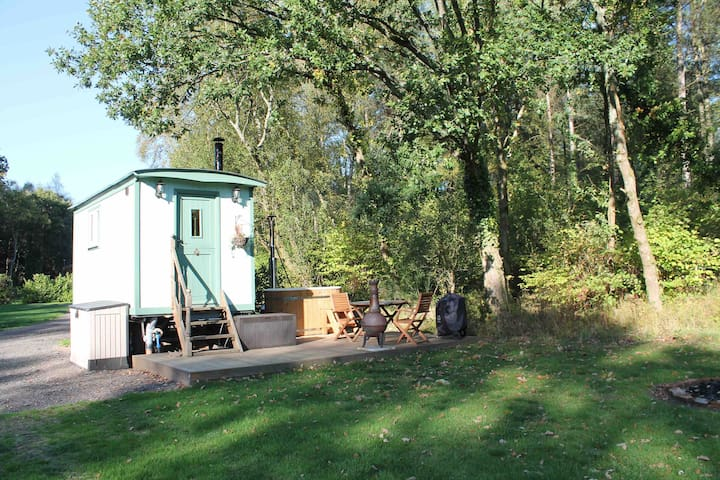 Ivy the shepherds hut with hot tub