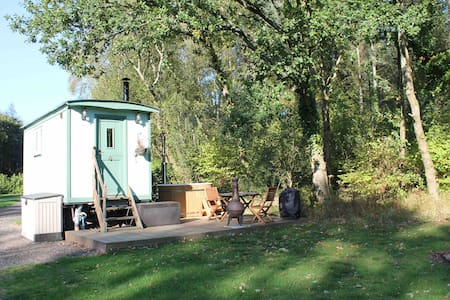 Ivy shepherds hut with hot tub