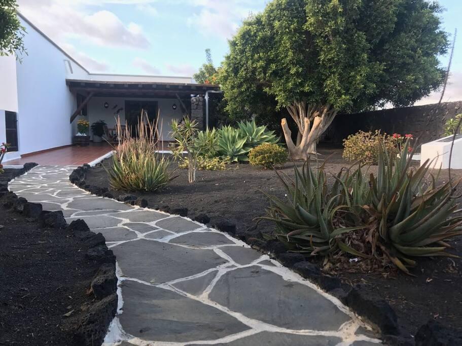 jardin y terraza delantera