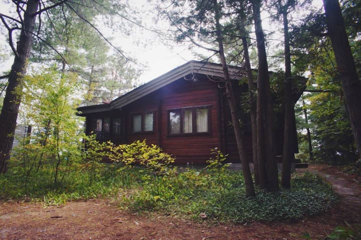 Lakefront Cozy Cedar Cabin - 3 Bedrooms