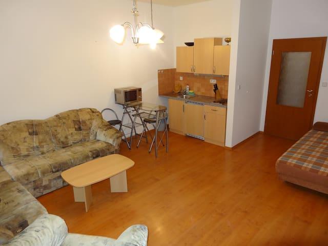 1 - Zimmer Wohnung 38 m2, nahe zum Zentrum