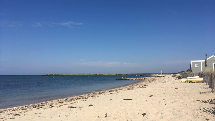 Nature paradise near Bay Beach I