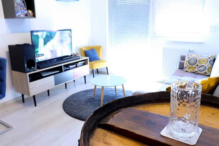 Appartement tout confort vue sur les Vosges