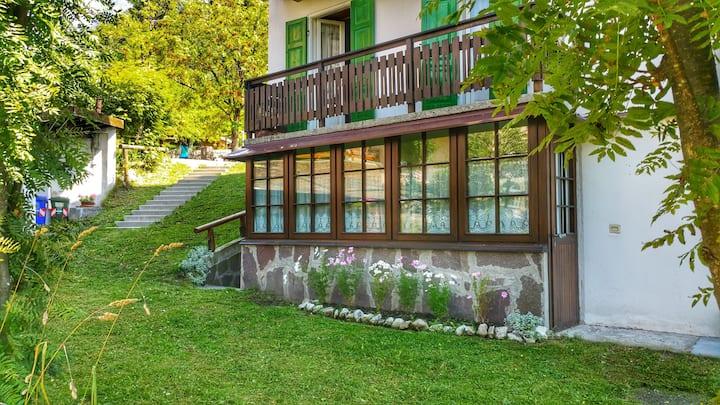Cozy Alpine House di Svaizer