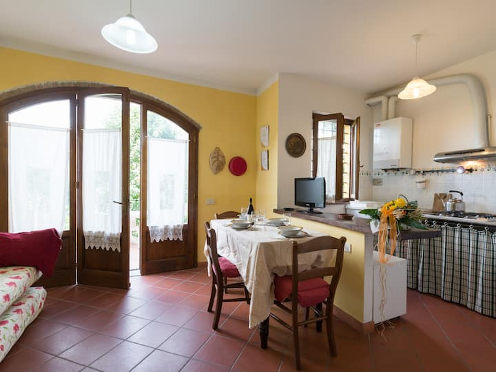 Apartment with pool close to the woods in Tuscany