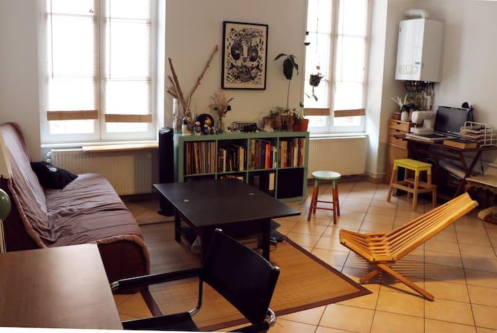 Chambre dans Appart cosy en plein coeur de Lyon