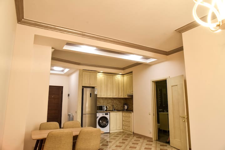 Newly renovated apt in center,  Amiryan street