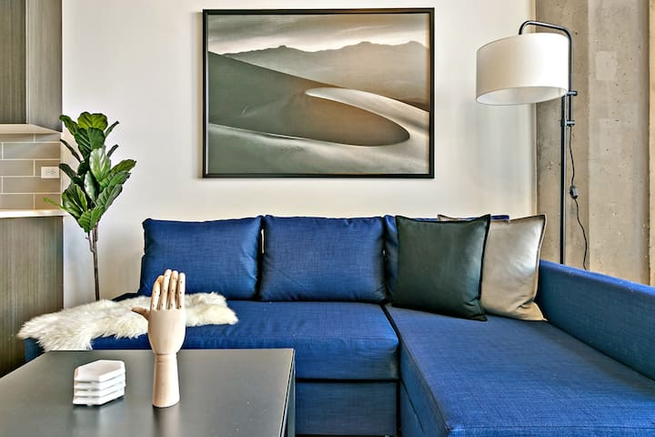 ❤️ New! Cool 2BR in South Loop $2360 Monthly Deals