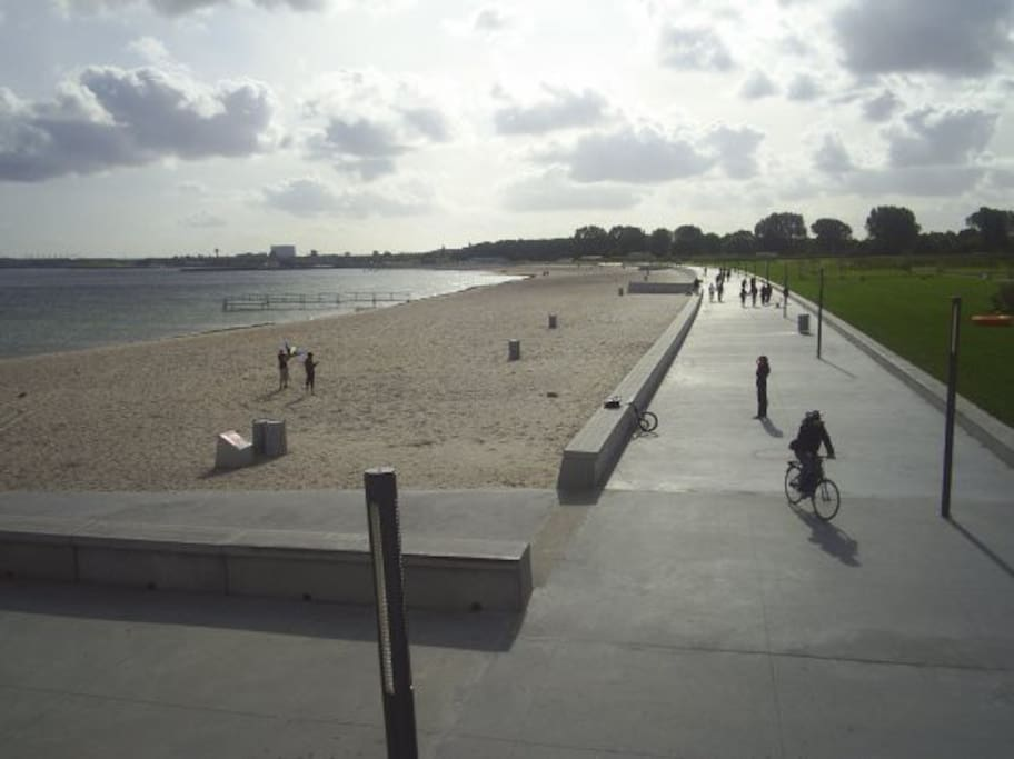 The beach at Amager Strandpark