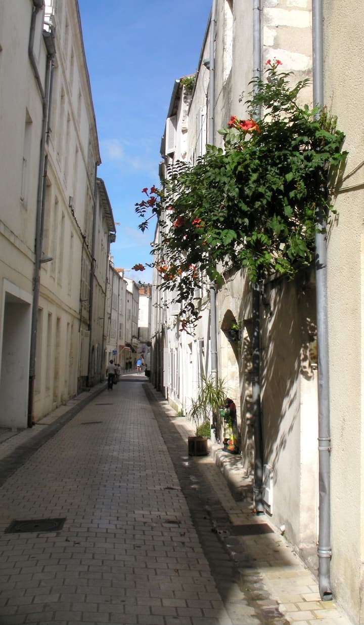 Vacances Calmes et Sans Voiture Cœur La Rochelle