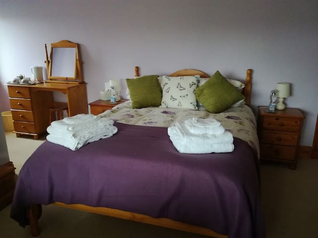 Ty Newydd Bed and Breakfast - Llangadog - Bed & Breakfast