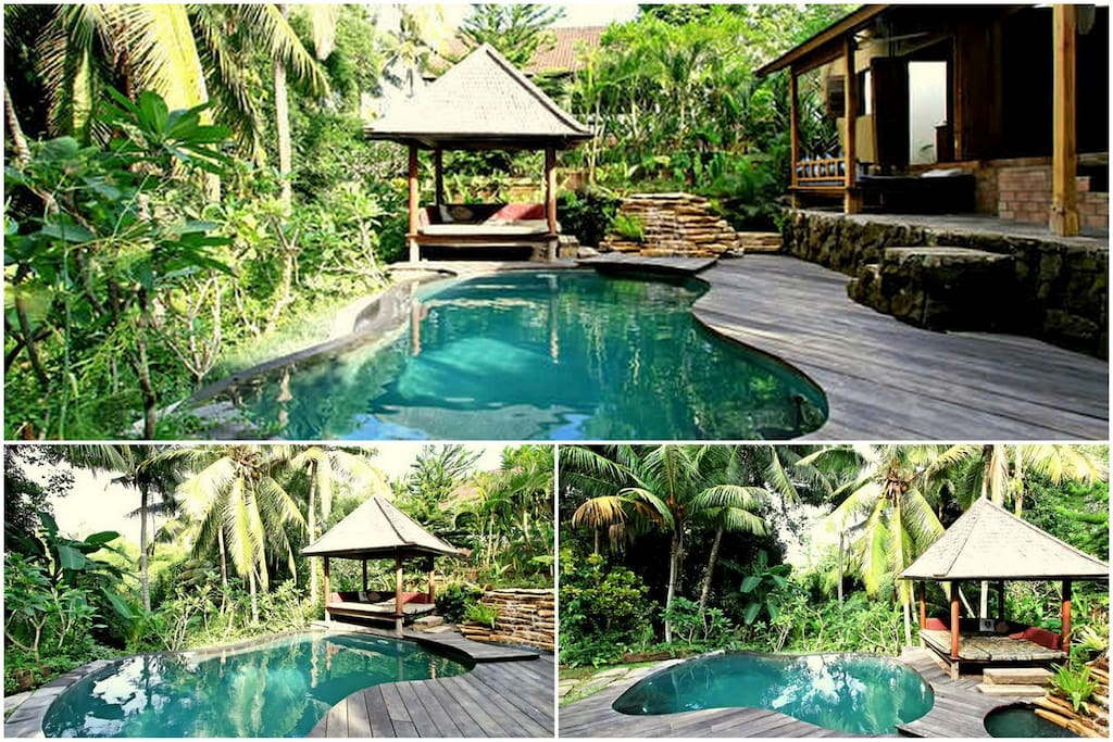 The Pool features infinity edge, plunge pool with natural waterfall and ironwood deck. Swa