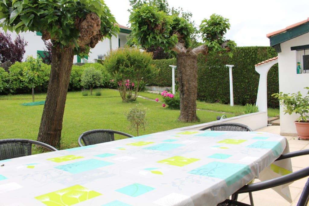 Vue de la  terrasse (les 2 mûriers platanes possèdent davantage de feuilles l'été)