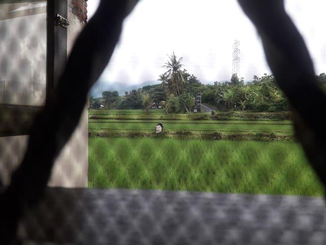 Home Monik Pandiangan