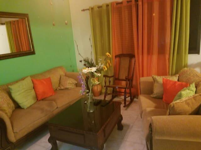 Spacious City Apartment