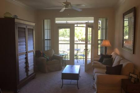 Full plush apartment in Southwest Austin - Pis